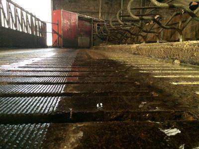 Rainurage caillebotis - Dalle béton -IMG_1199