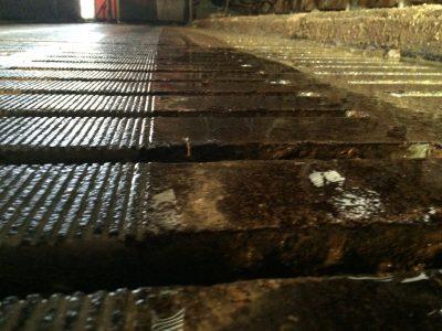 Rainurage caillebotis - Bâtiments agricoles -IMG_1203
